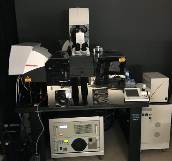 two-photon-microscope