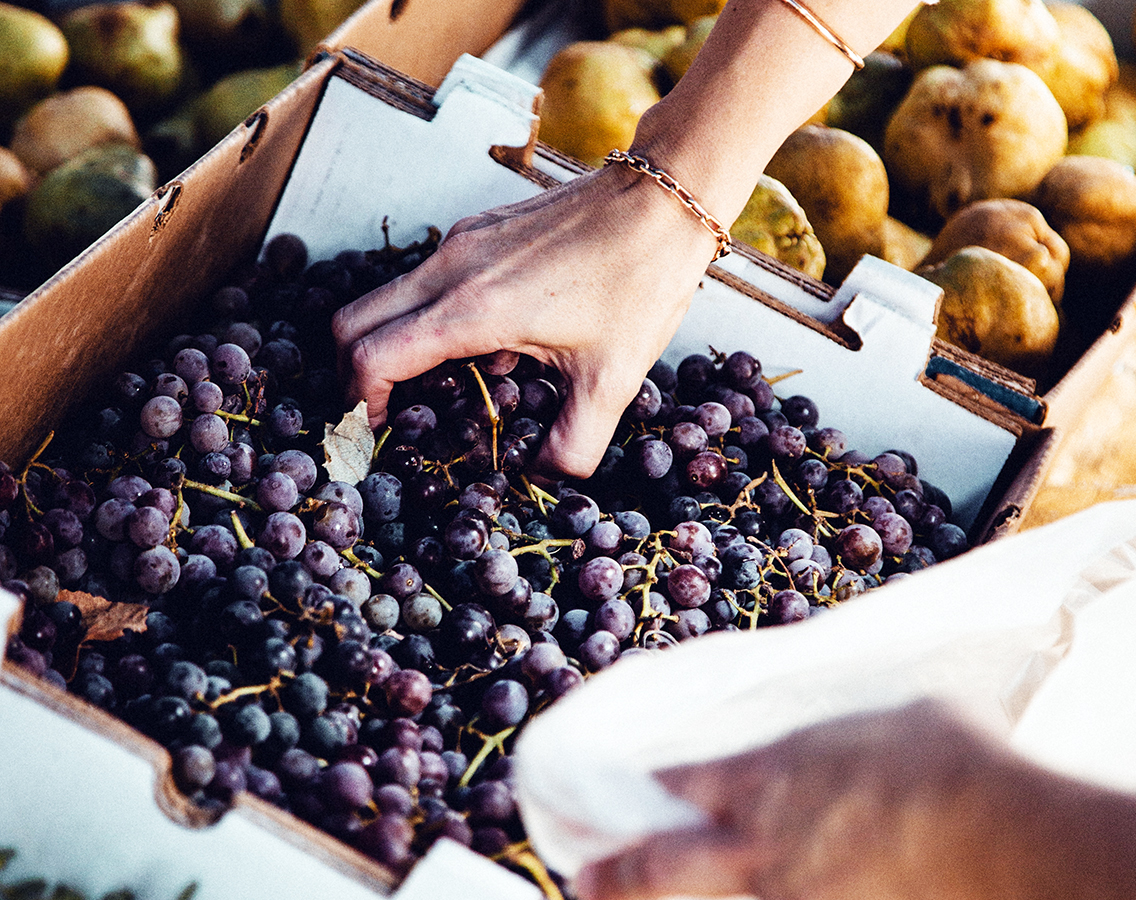 hand reaching into bin of black grapes