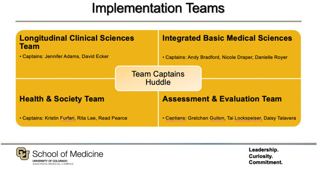 diagram of implementation teams