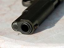 gun-206-2