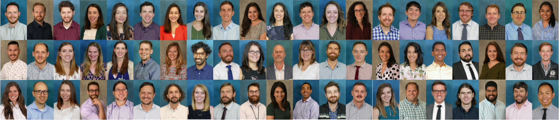Residency/Fellowship Composite Picture 2019