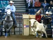 Cowboy doctor helps stock show riders