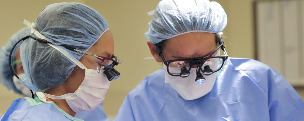 Plastic surgeons in the operating room