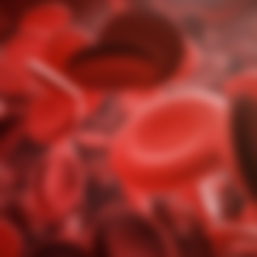 Red Blood Cells Blurred