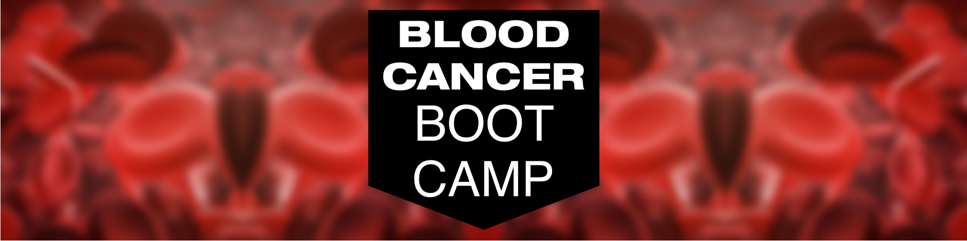 Blood Cancer Boot Camp text over blood cells