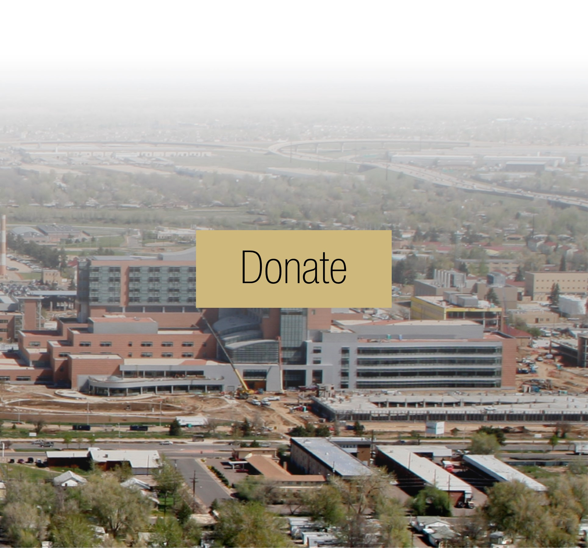 Home | Division of Hematology at the University of Colorado